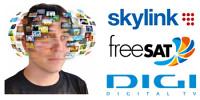 Přeled satelitních programů - Skylink, freeSAT, Digi TV